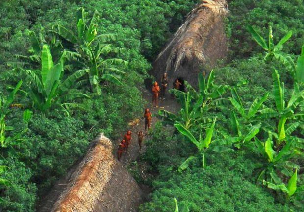 Резерватът Вали До Джавари, Бразилия