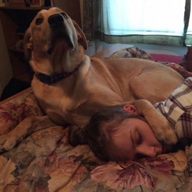 """""""Приятелката ми заспа. Когато я целунах по бузата, кучето й ме погледна по този начин..."""""""