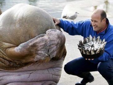 14 снимки на животни, които ще усмихнат деня ти