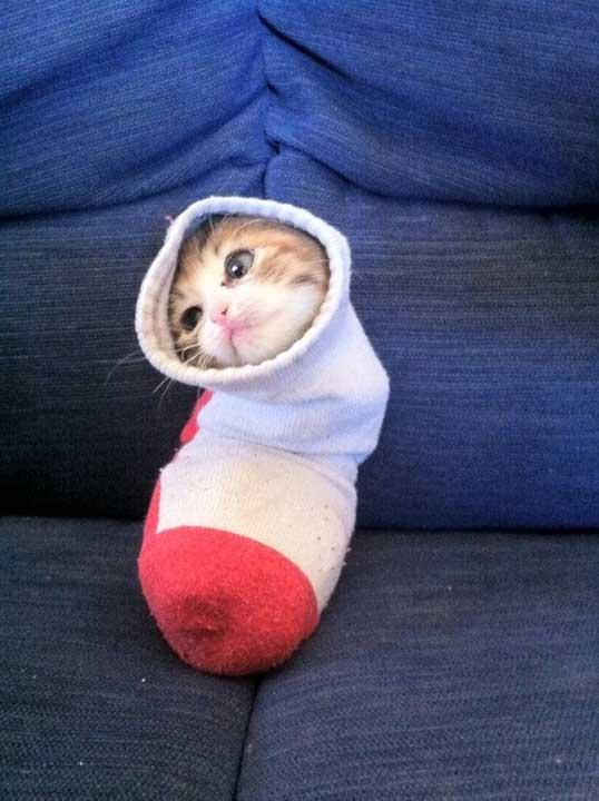 """""""На кой му е притрябвал подарък в чорапа, когато има мен?"""""""