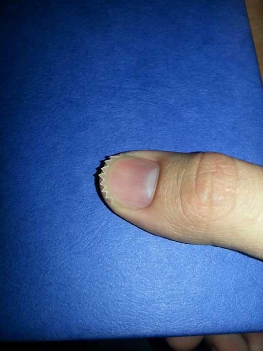 Хищният нокът