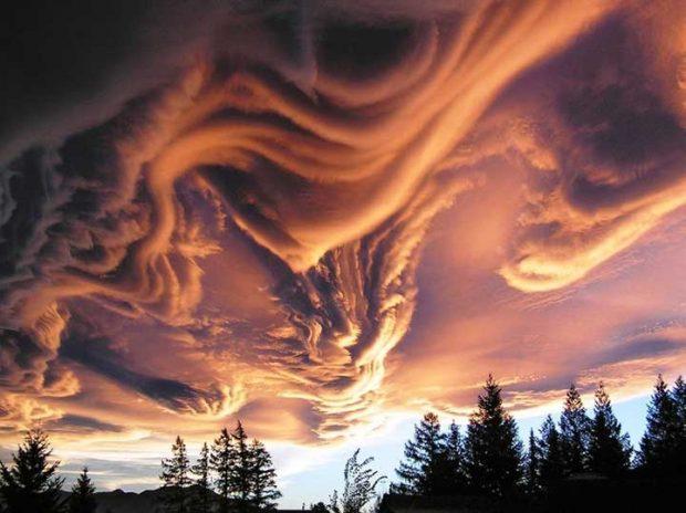 Да, природата наистина е велик художник