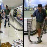 28 снимки, потвърждаващи, че абсурдите са навсякъде около нас