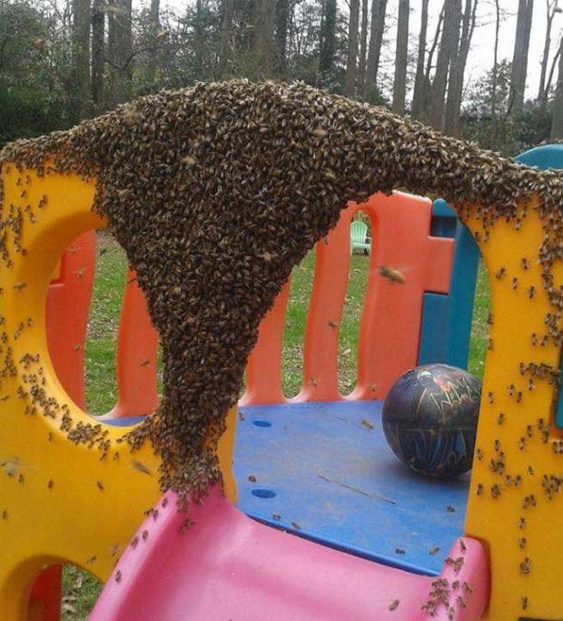 """""""Да отидем на детската площадка и да си поиграем"""", така ми казаха"""