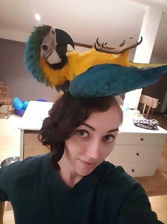 """""""Какво мислите за шапката ми?"""""""