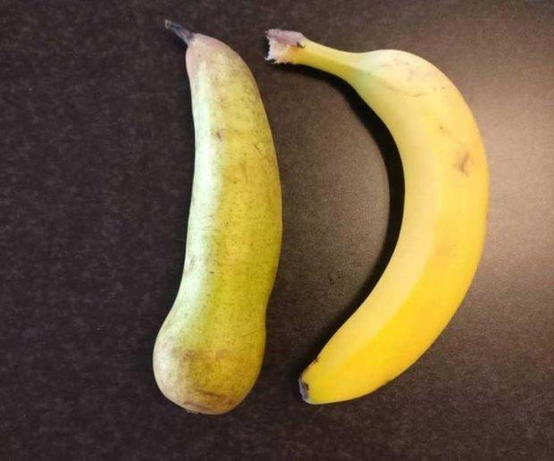Тази круша е точно толкова дълга, колкото и банана, нищо, че не изглежда така 😉