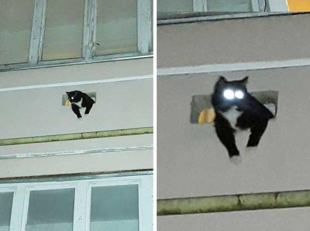 """""""Комшията си инсталира нова камера. Сега можем да спим спокойно. Никой враг няма да посмее да премине"""""""