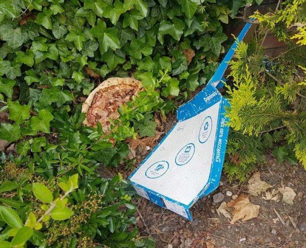 Няма по-тъжна снимка от тази на пица, изоставена на произвола
