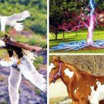 24 удивителни снимки, потвърждаващи, че светът е пълен с чудеса