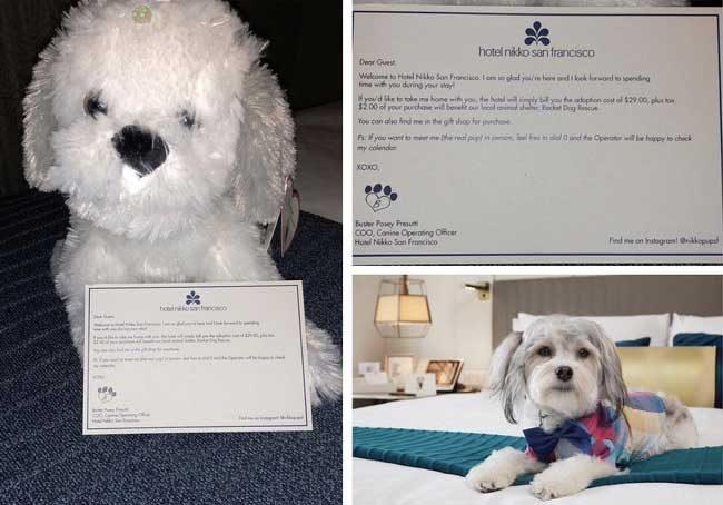 """""""В хотела, в който отседнах ти оставят плюшено кученце на леглото. На него има бележка да се обадиш на оператор, ако искаш да ти осигурят истинско куче за компания по време на престоя ти"""""""