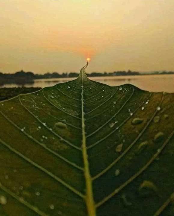 Път към Слънцето