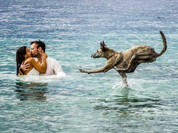 17 невероятни сватбени снимки, които ще спрат дъха ти