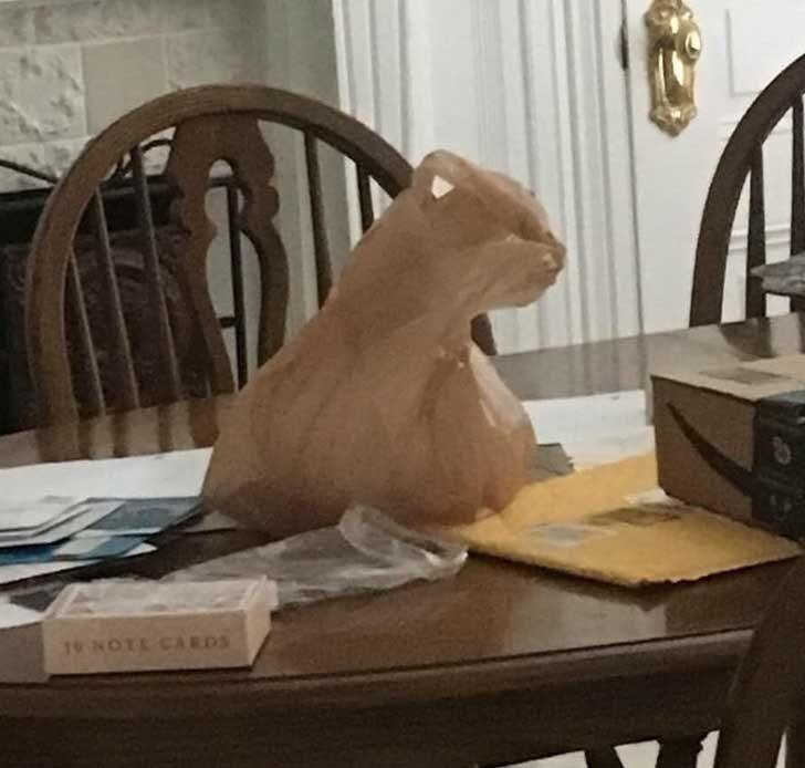 """""""Каква красива скулптура... О, няма значение, това е просто найлонова торбичка"""""""