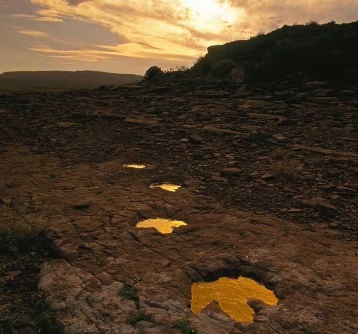 Стъпки на динозаври, живели през първата половина на периода Креда, Аржентина