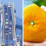 Япония е една от най-развитите държави в света и тези невероятни снимки ще ти го докажат
