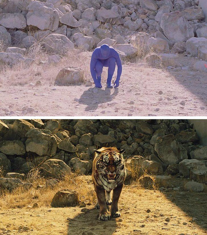 """В една от сцените на """"Западен свят"""" човек играе тигър"""