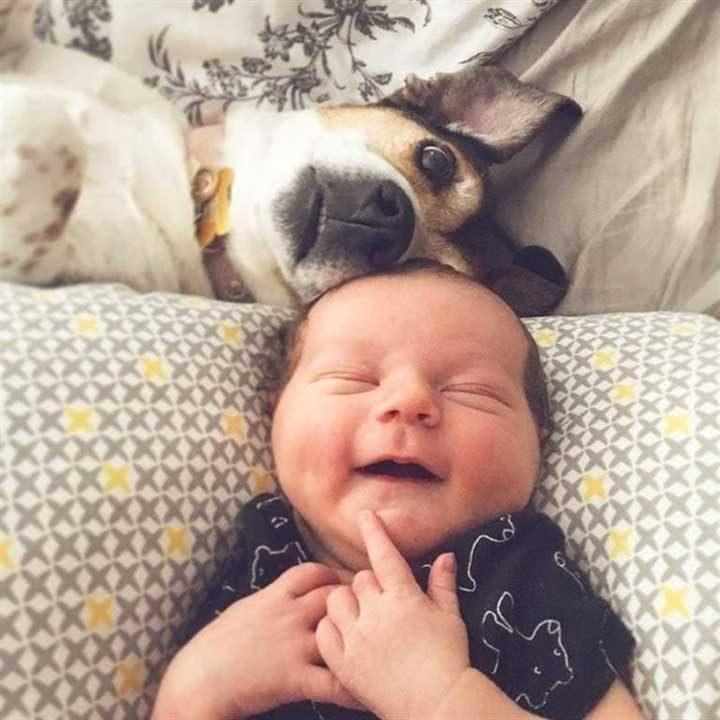 """""""Притеснявахме се, дали новороденото ни бебе и кучето ще се разбират. Оказа се, че бързо станаха най-добри приятели"""""""