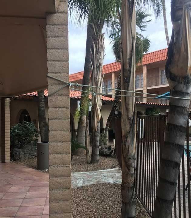 Дърво, завързано с въже, за да не падне изглежда ли ти достатъчно безопасно? Това е хотел в Аризона