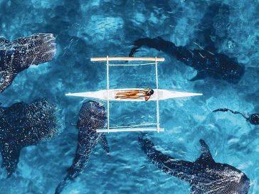 25 снимки с дрон, след които ще пожелаеш да имаш криле