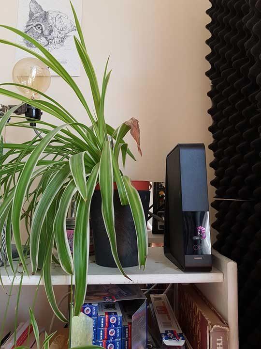 Растение, което не се развива от страната, която е близо до рутер за безжичен интернет