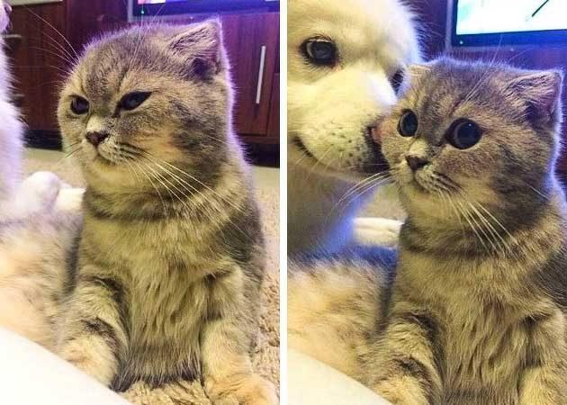 Когато си ядосан на някого, но получиш внезапна целувка