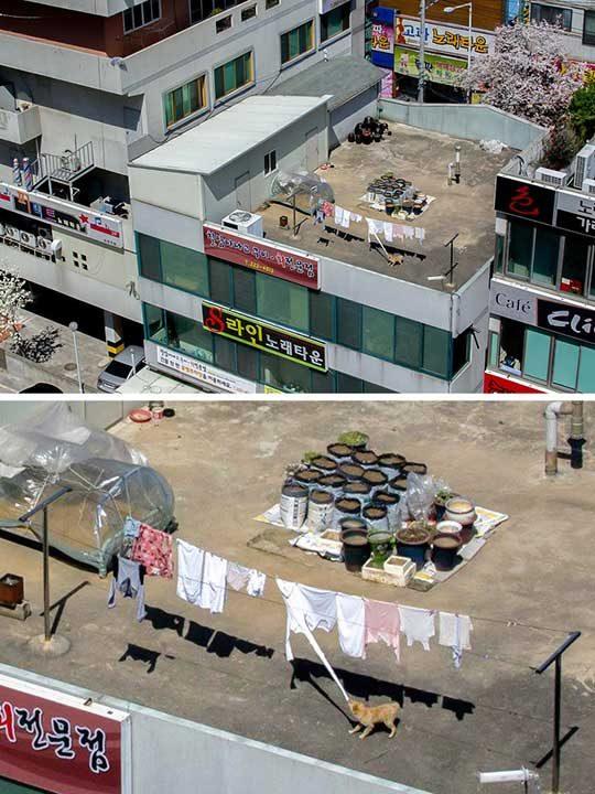 Не просто скучен покрив, а сцена на престъпление