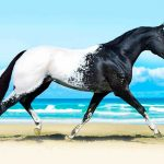 15 изключително редки животни, които изглеждат почти нереално