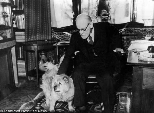 Верен приятел помага на Фройд в неговата работа