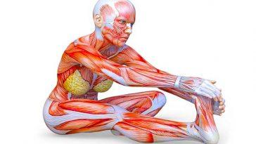 10 упражнения за разтягане, които ще подобрят гъвкавостта ти само за 4 седмици