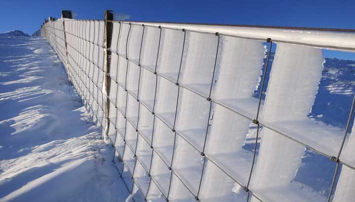 Замръзнала ограда, изглеждаща като перфектната скулптура