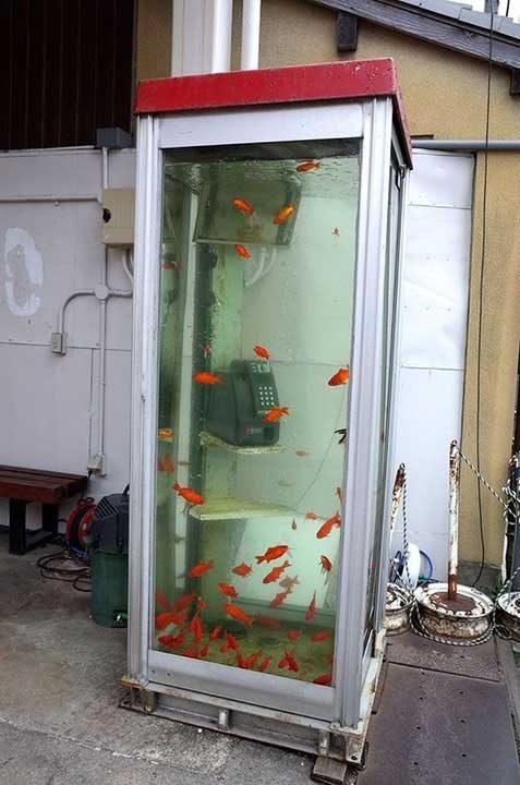 Това телефонната кабинка на Аквамен ли е?