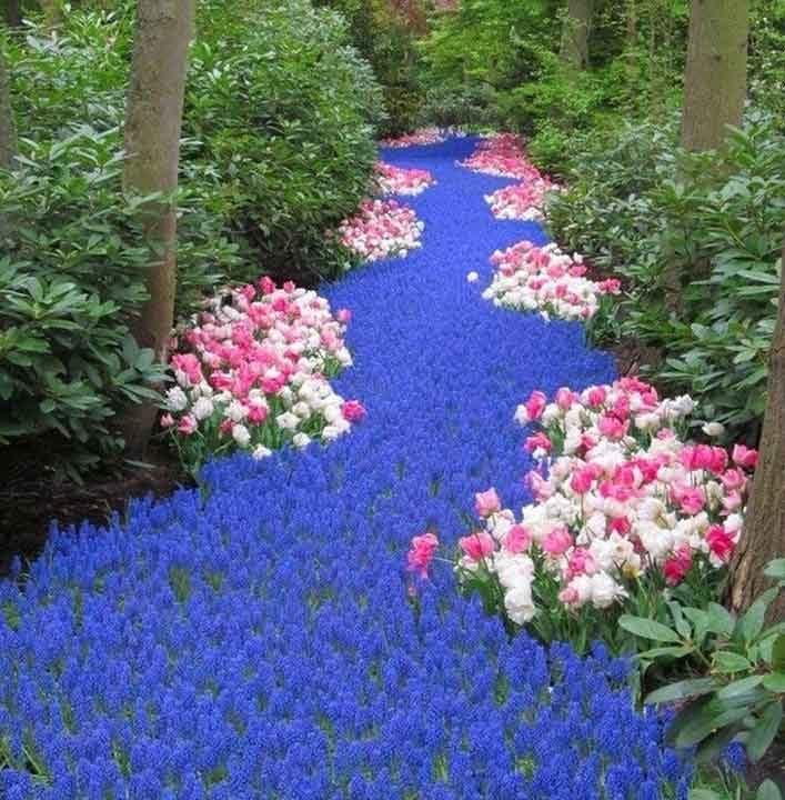 Цветна леха, изглеждаща като същинска река