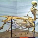 20+ древни музейни експонати, уникални за целия свят