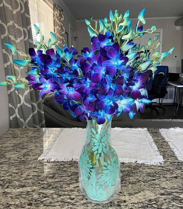 Тези цветя са твърде живописни, за да бъдат реални