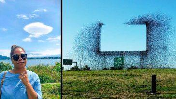 20+ реални снимки, които ще ти завъртят главата