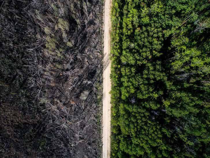 Пътят, който спря пожара