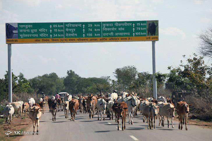 Чхатисгарх, Индия