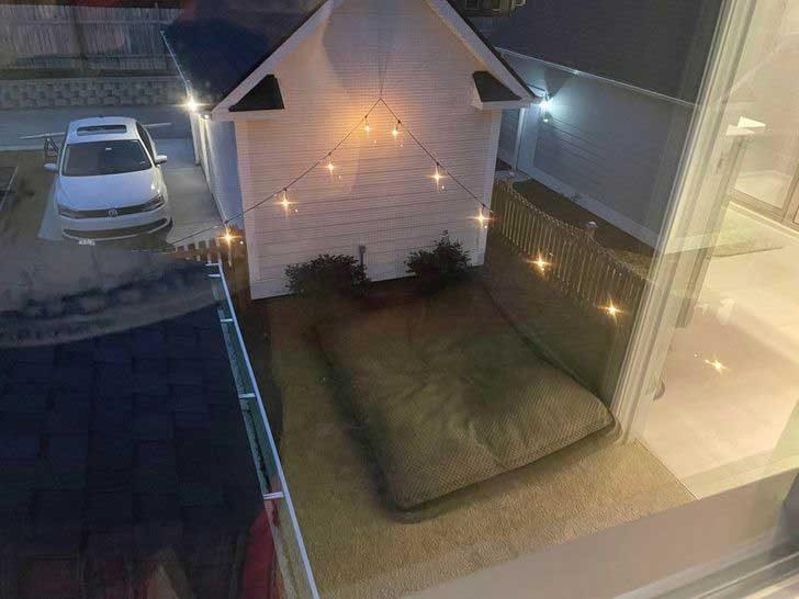 Това огромно кучешко легло, разположено в задния двор ли е?