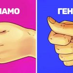 Какво разкрива формата на юмрука за твоята личност