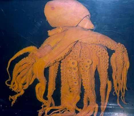 Октопод с 32 пипала е открит в Южна Корея