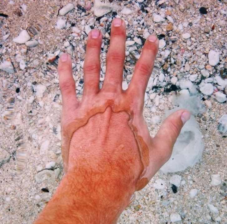 Водата е толкова бистра, че прави ръката на този човек да изглежда така, сякаш има два слоя кожа