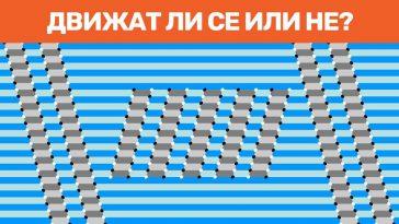 15+ оптически илюзии, които ще объркат мозъка ти